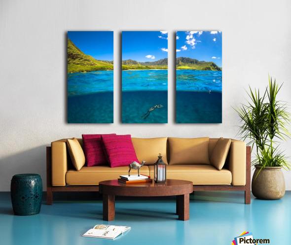 Makua Split Canvas print