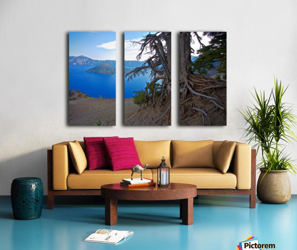 Gnarled White Pine overlooking Crater Lake Aug 2015 Split Canvas print