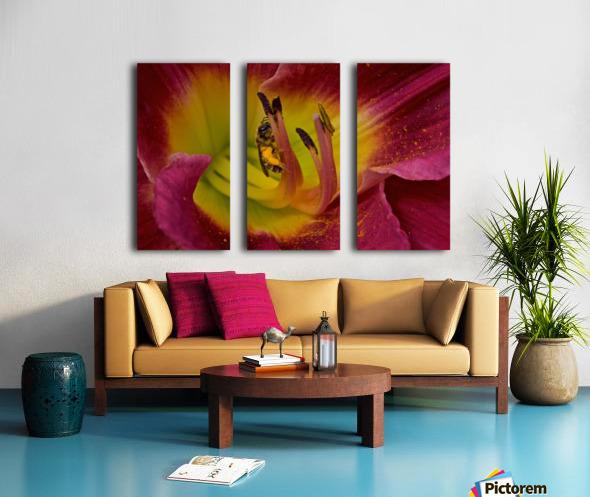 Bee Inside Corn Lily - Landscape Split Canvas print