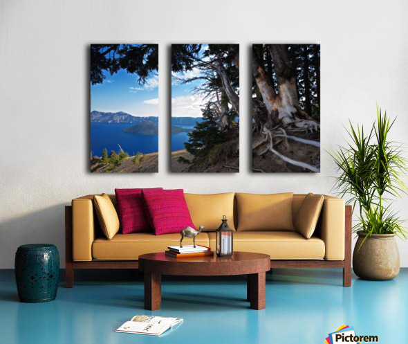 Crater Lake & Gnarled White Pine Split Canvas print