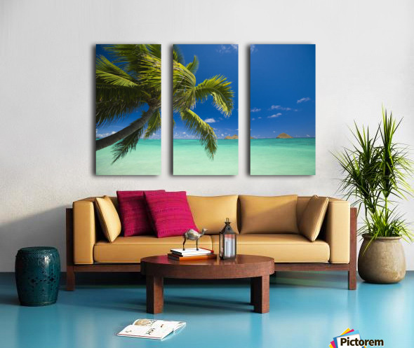 USA, Hawaii, Oahu, Mokulua island in background; Lanikai, Palm tree over Pacific Ocean Split Canvas print