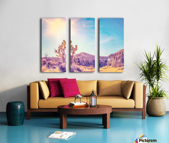 cactus at the desert in summer with strong sunlight Split Canvas print