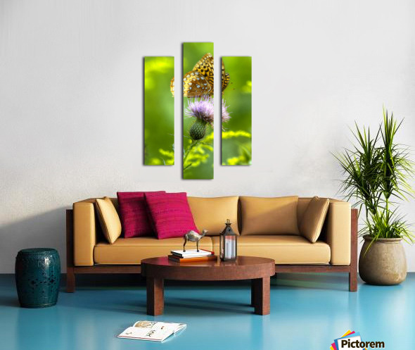 Thistle Nectar Canvas print