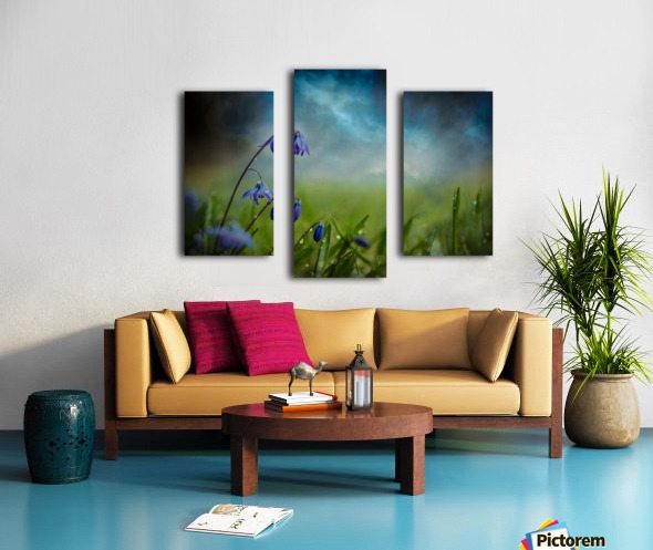 After the spring rain Canvas print