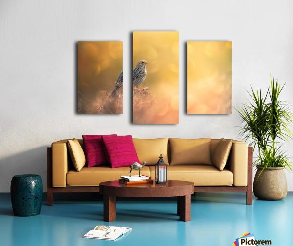 Lost in Bokeh Canvas print