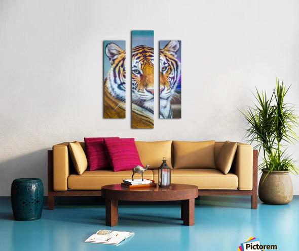 Portrait of Bengal Tiger (panthera tigris tigris) endangered species, captive; Chippewa Falls, Wisconsin, United States of America Canvas print