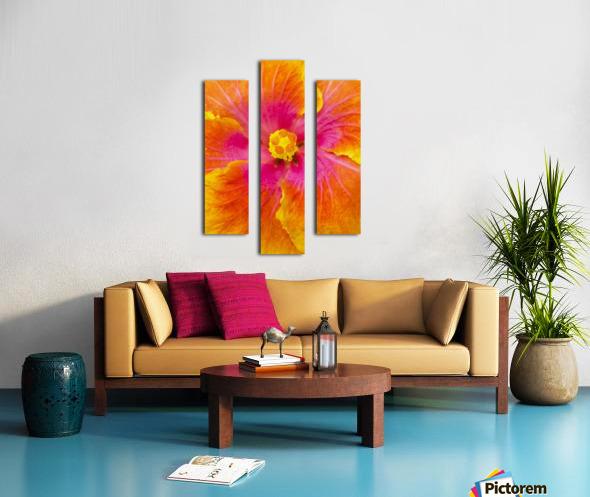 Close-up macro shot of a beautiful orange, pink and yellow Hibiscus flower; Honolulu, Oahu, Hawaii, United States of America Canvas print