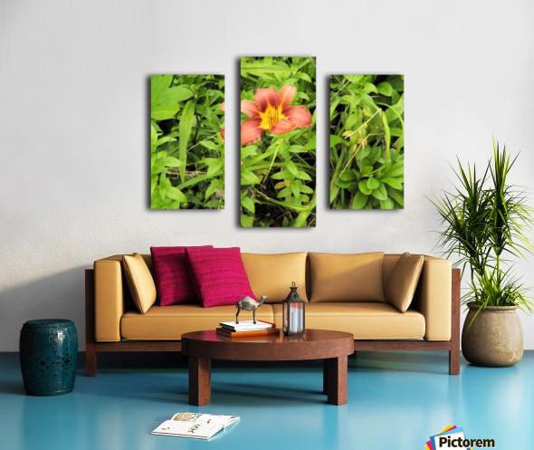 Oranger Lilly 4 Canvas print