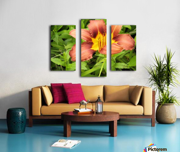 Oranger Lilly 3 Canvas print