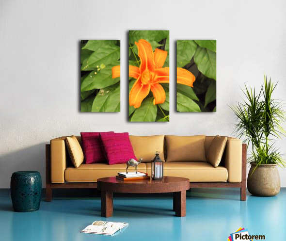 Orange Lilly 1 Impression sur toile