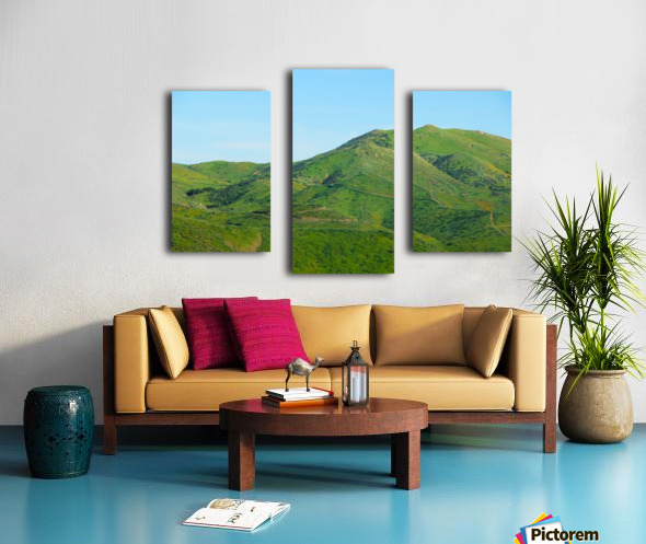 green field and green mountain with blue sky Canvas print