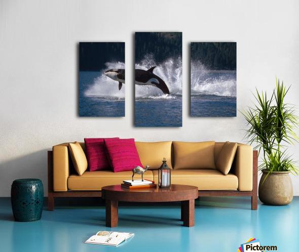 Double Breaching Orcas Bainbridge Passage Prince William Sound Alaska Summer Southcentral Canvas print