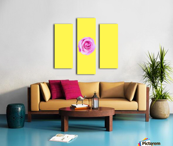 closeup pink rose with yellow background Canvas print