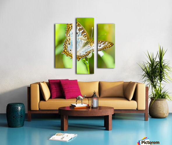 Psychedelic White Peacock Butterfly Canvas print