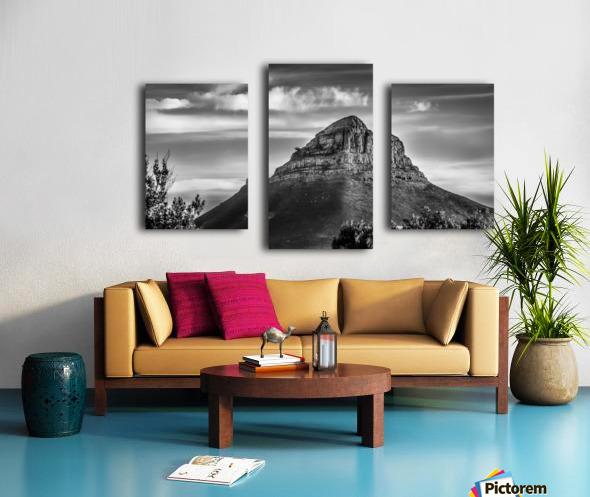 LionsHeadBW Canvas print