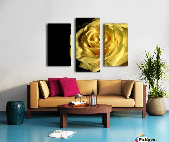 Yellow dew Canvas print