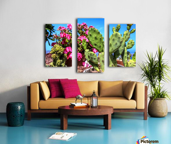 Cactus and colourful Flowers Canvas print