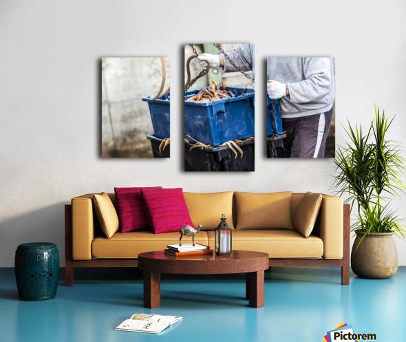 Snowcrab Canvas print