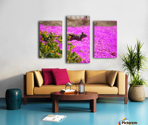 Pink Wild Flowers on a Hill With a Squirrel Canvas print