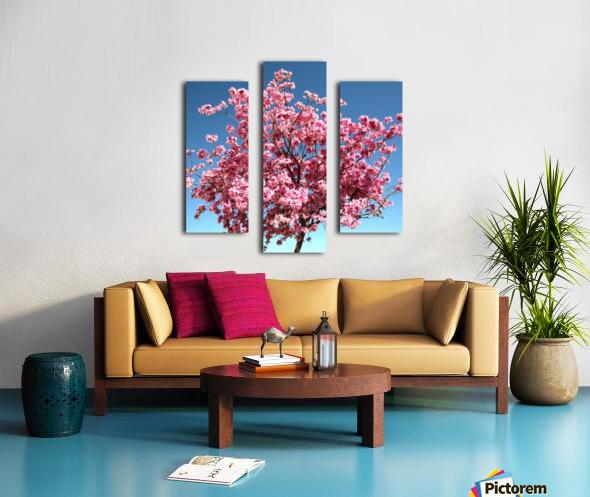 Cherry Blossom on Blue Canvas print