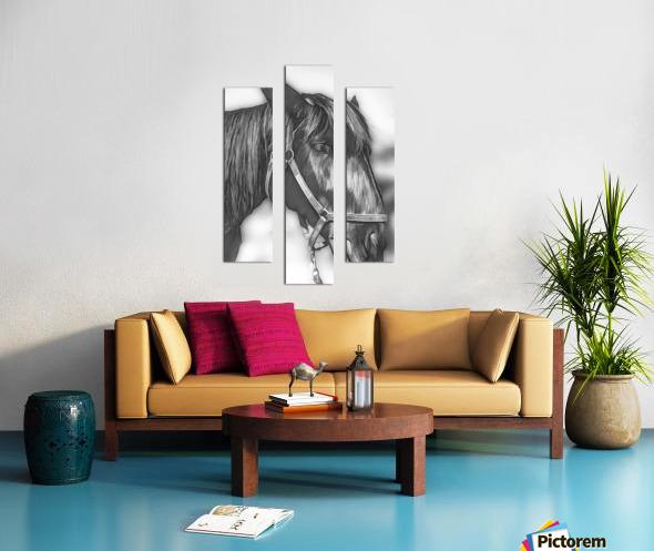 A Real Beauty Canvas print