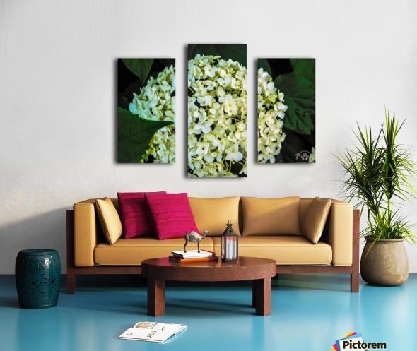 White Perfection Canvas print
