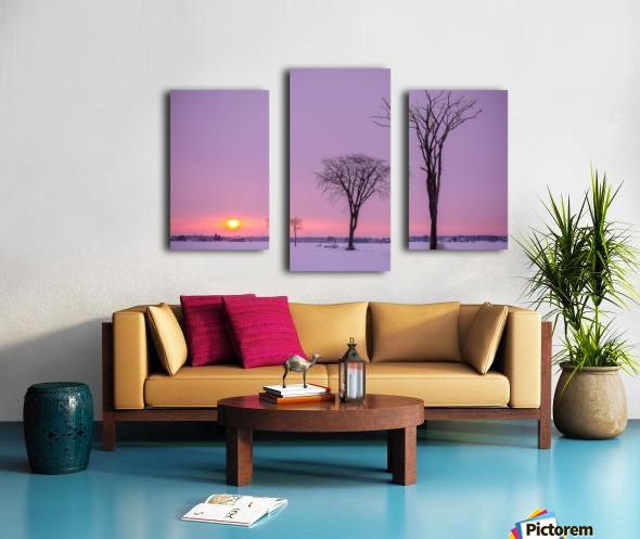 Mirabel mauve Canvas print