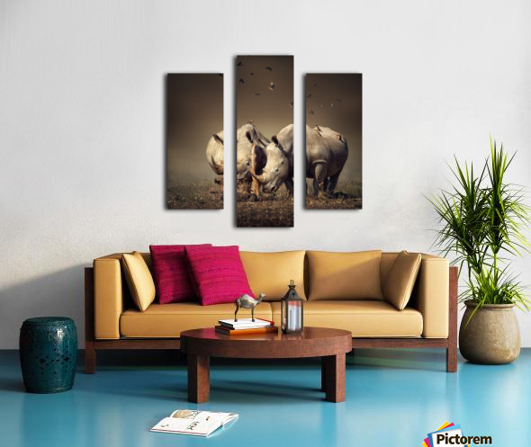 Two Rhinoceros with birds Canvas print