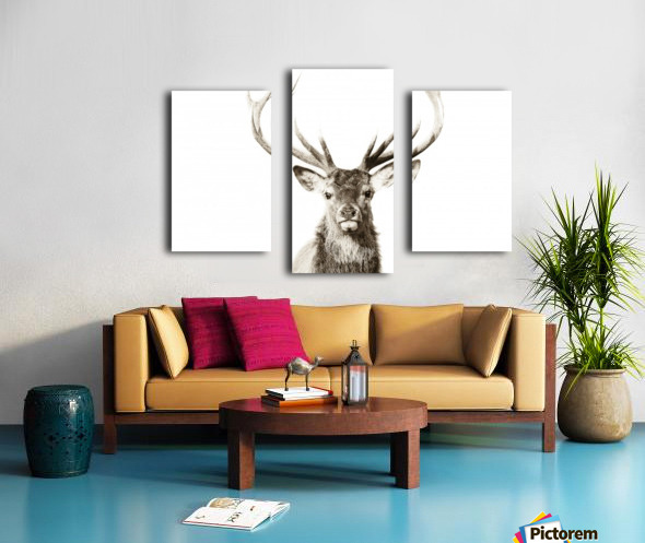 Cerf rouge Canvas print