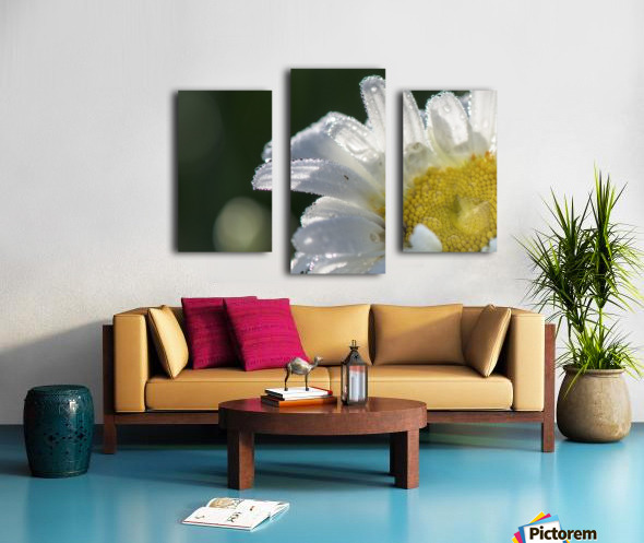 Blancheur de la rosee Canvas print