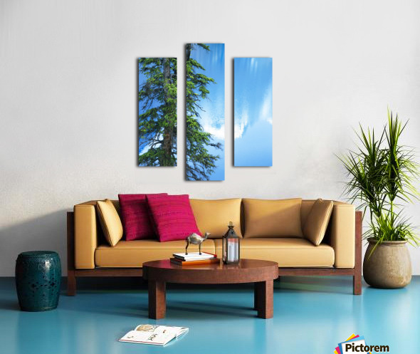 Natural order Canvas print