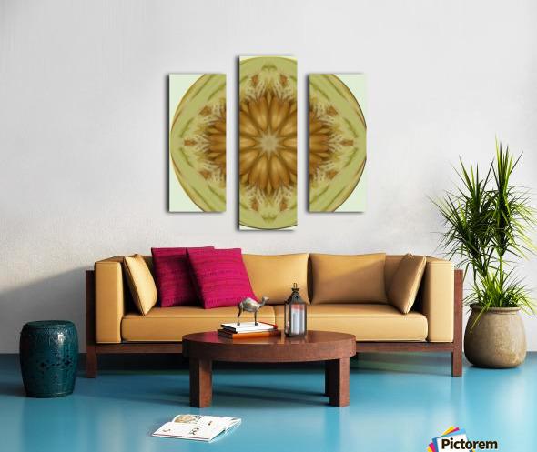 melon 1 Canvas print