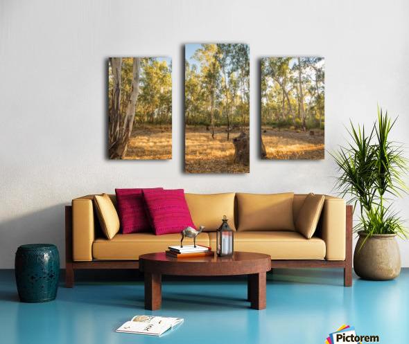 Magic forest circle Canvas print