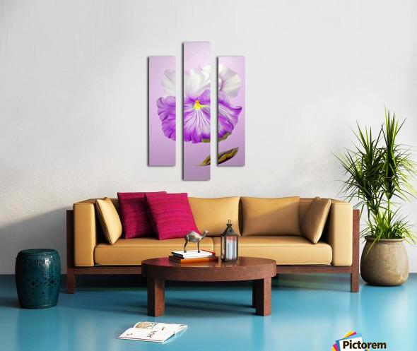 Purple Pansy Canvas print
