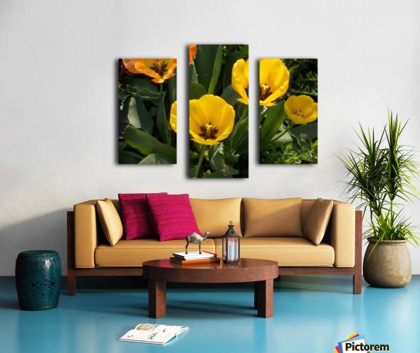 DSCN0763 Canvas print