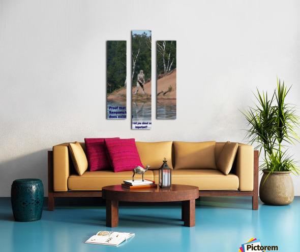 Sasquatch1 Canvas print