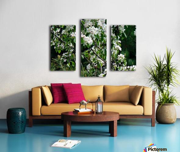 DazzleBlossoms Canvas print
