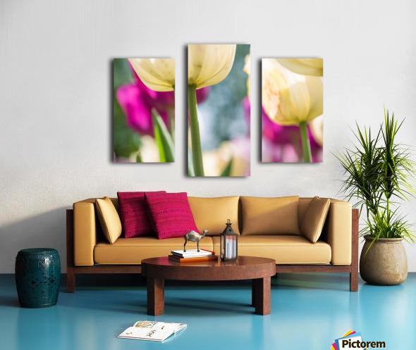 Under The Tulips - Sous Les Tulipes Canvas print