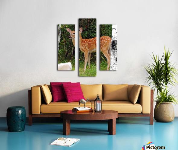 FawnBySaltBlock3 Canvas print