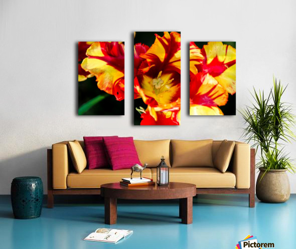 Tulip in Fringed Dress Canvas print