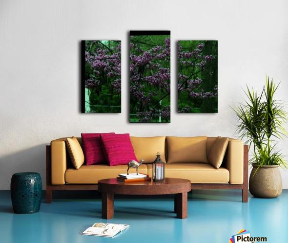 sofn-094A1D2D Canvas print