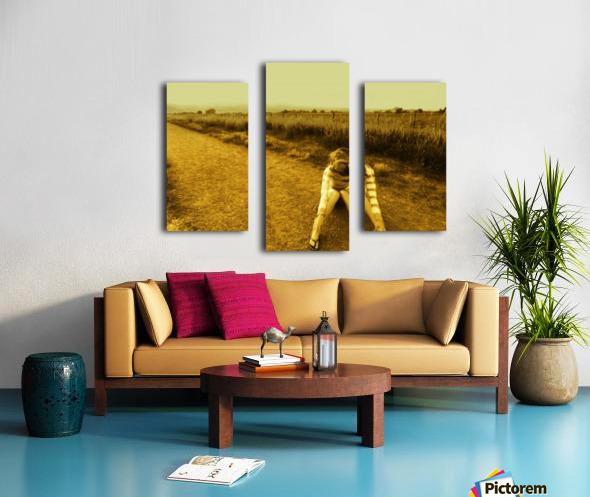 sofn-73D2CA6C Canvas print