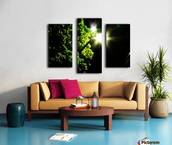 sofn-12072B59 Canvas print