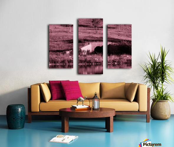 B (12) Canvas print