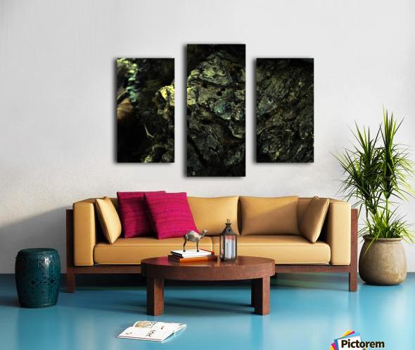 B (3) Impression sur toile