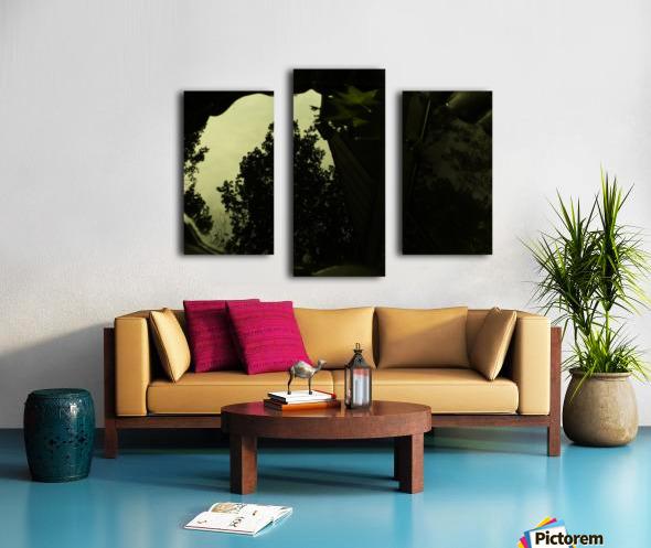 sofn-2B688FDF Canvas print