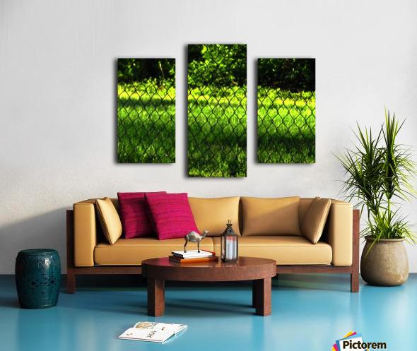 sofn-8DCA7EEB Canvas print
