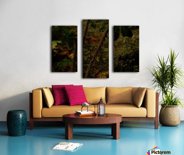 D (14) Canvas print