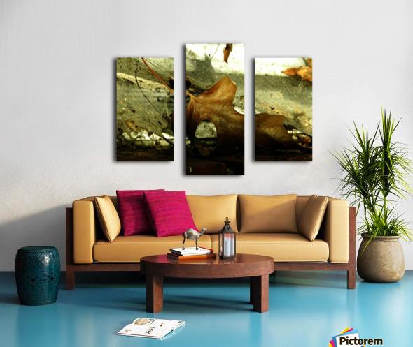 D (1) Impression sur toile