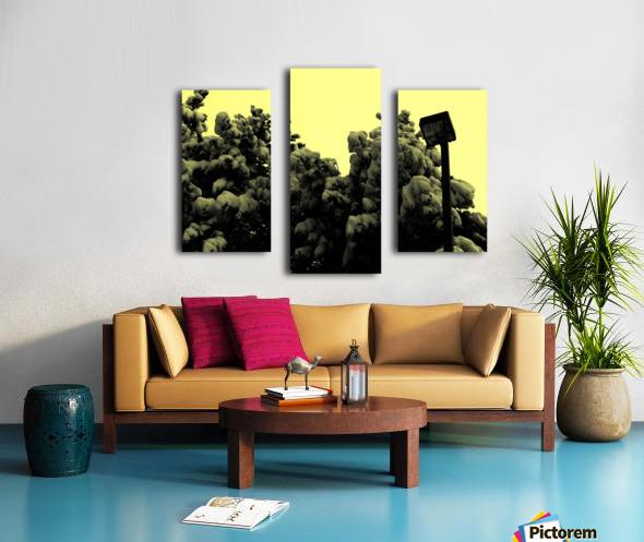 D (10) Canvas print